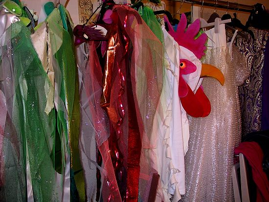 Panto Costumes by Nancy Farmer