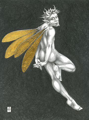 'Gold Fairy 30