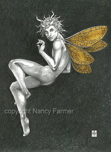 Gold Fairy No. 34